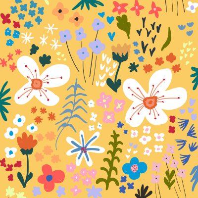 illustration Magali Boyer